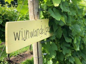 Weinwanderweg in balkbrug. Foto Sybylle Kroon