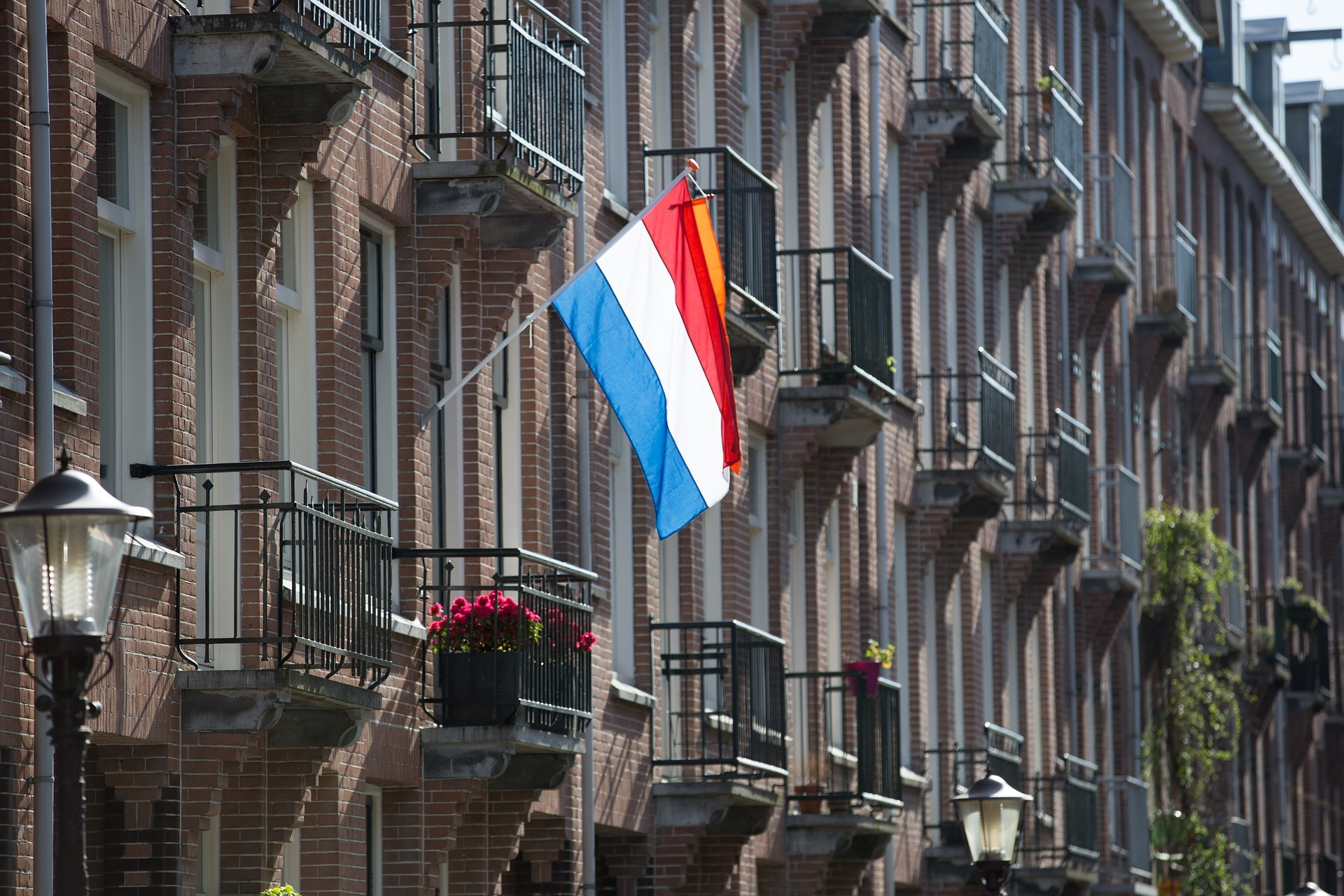 holland vlag flag